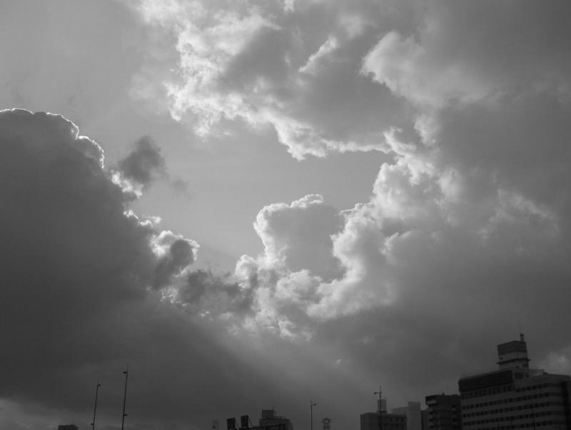 春の嵐の画像