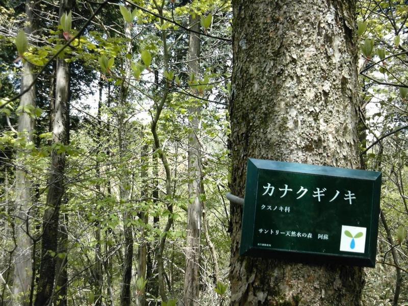 天然水の森の画像