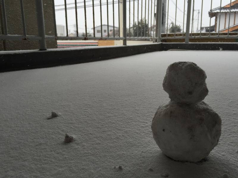 記録的な大雪の画像