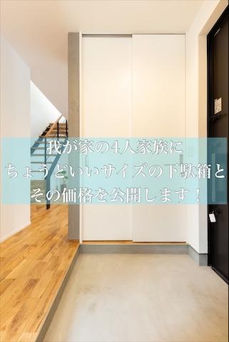 f:id:mae3:20201017220724j:plain