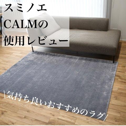 f:id:mae3:20210402220310j:plain