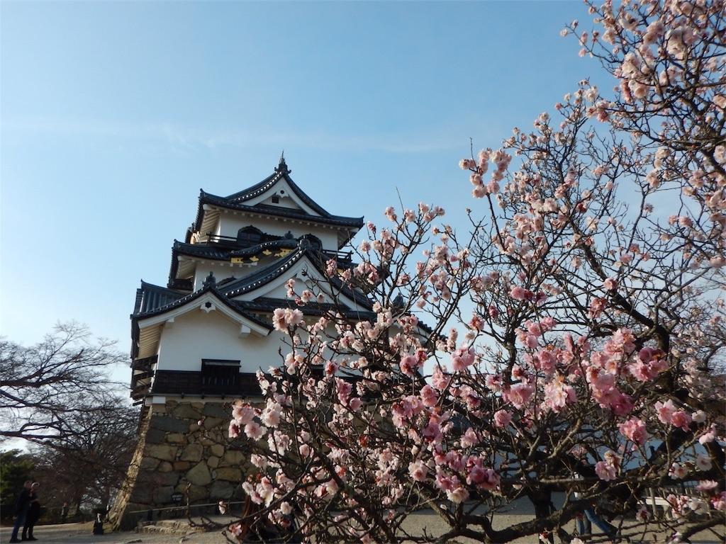 f:id:maedanatsuki:20170408221044j:image