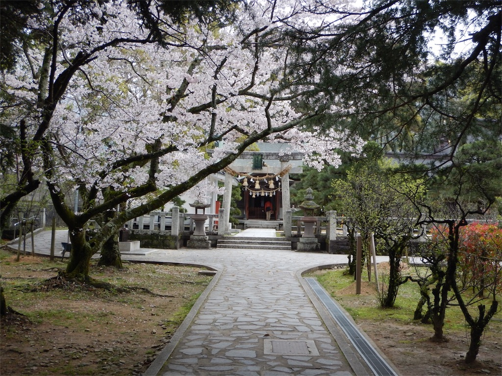 f:id:maedanatsuki:20170413174047j:image