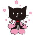 f:id:maehara63:20170506083208j:plain