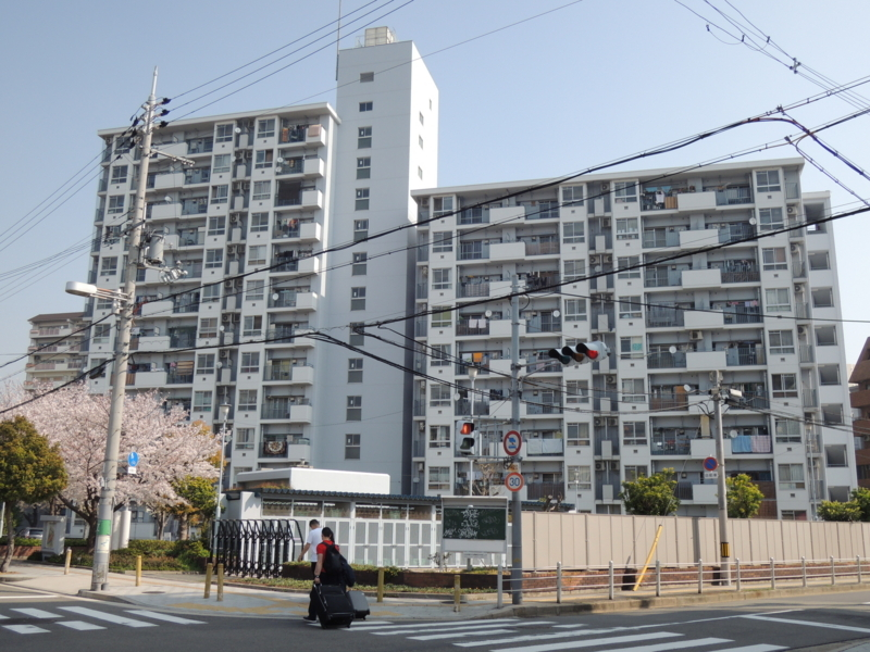 f:id:maekawa_kenichi:20180611180533j:image:w640