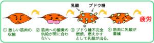 f:id:maemukiworld:20170102233652j:plain