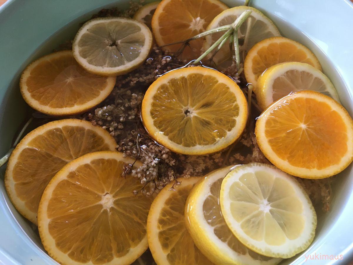 お砂糖なしレシピ ホルンダーブリューテンシロップ