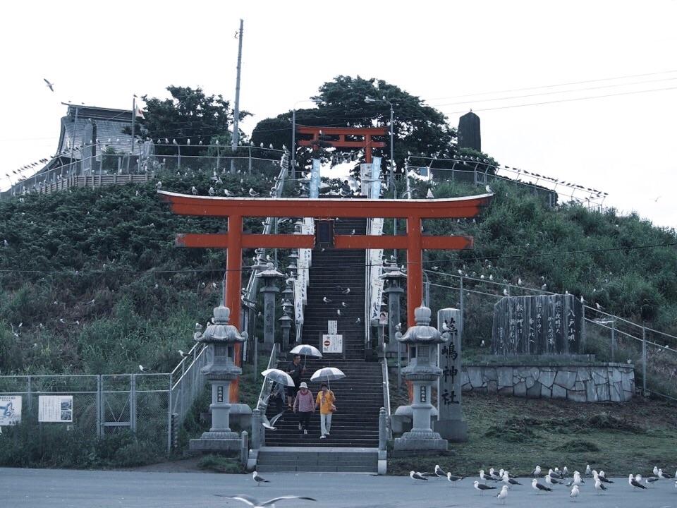 f:id:mafukuda3:20190105224021j:image