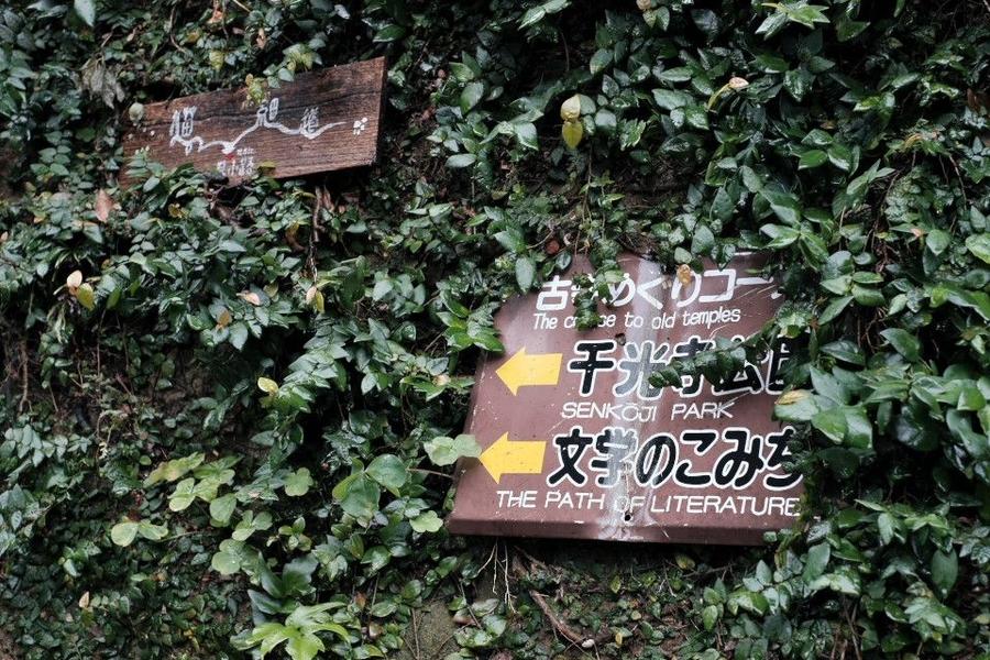 f:id:mafukuda3:20200113220941j:plain