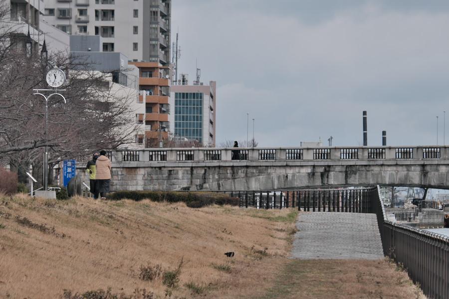 f:id:mafukuda3:20200120192702j:plain