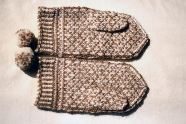 Squirrel and Oak Mittens