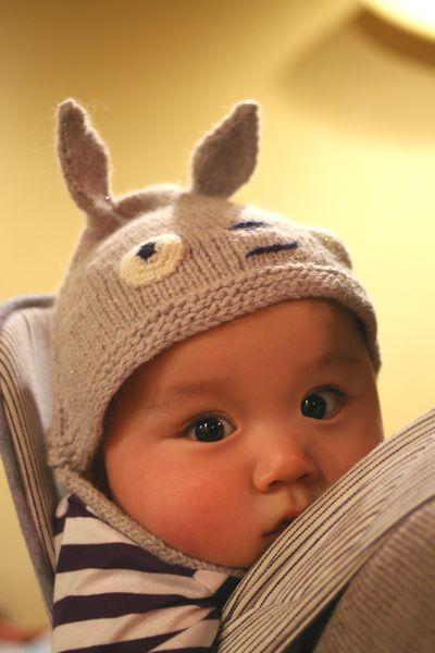 Totoro Cap