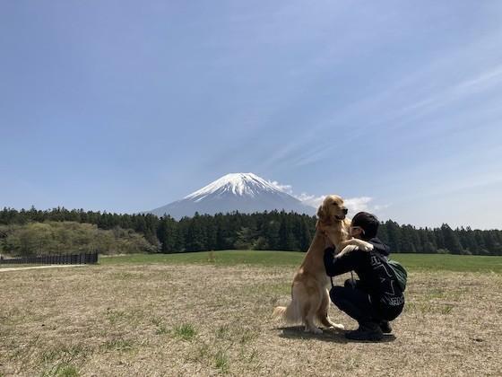 富士山とゴールデンレトリバー