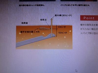 f:id:magasan:20210415202544j:plain