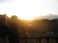夕日の中を歩く二人