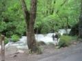 奥入瀬渓流,阿修羅の流れ(青森県十和田市)