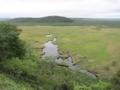釧路湿原,コッタロ湿原展望台より(北海道川上郡標茶町)