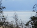 フィリップ島(モーニントン半島より,VIC,オーストラリア)