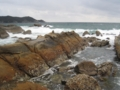 竜串海岸,大竹の先っぽ部分(高知県土佐清水市竜串)