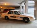 カルガリーのパトカー(CBSA)(アルバータ州,カナダ)