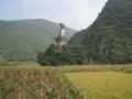 万峰林風景区,将軍峰(中国貴州省黔西南プイ族ミャオ族自治州興義市)