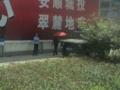 安順のパトカー(中国貴州省安順市)