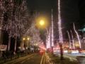 OSAKA光のルネサンス,御堂筋コーラル(大阪市中央区)