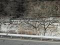 木曽川の花崗岩下刻作用の状況(長野県木曽郡)