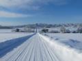 美瑛パノラマロードの冬景色(北海道上川郡美瑛町)