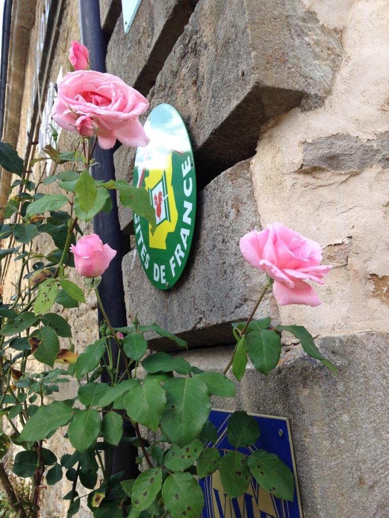 f:id:magnoliask:20170907001857j:plain