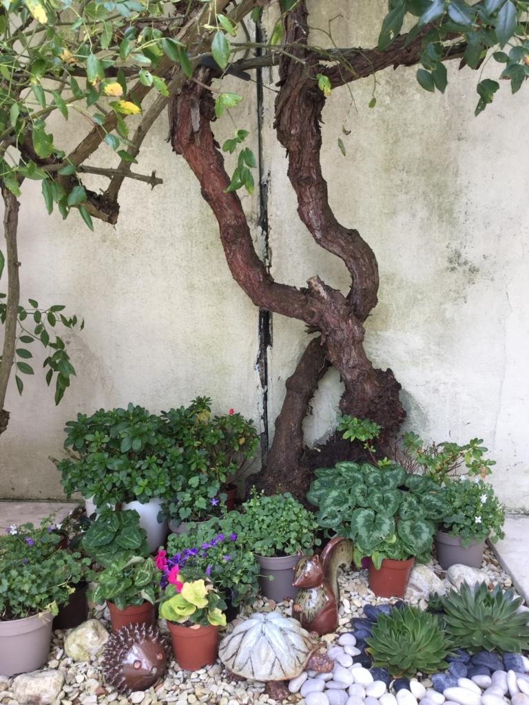 f:id:magnoliask:20170907005145j:plain