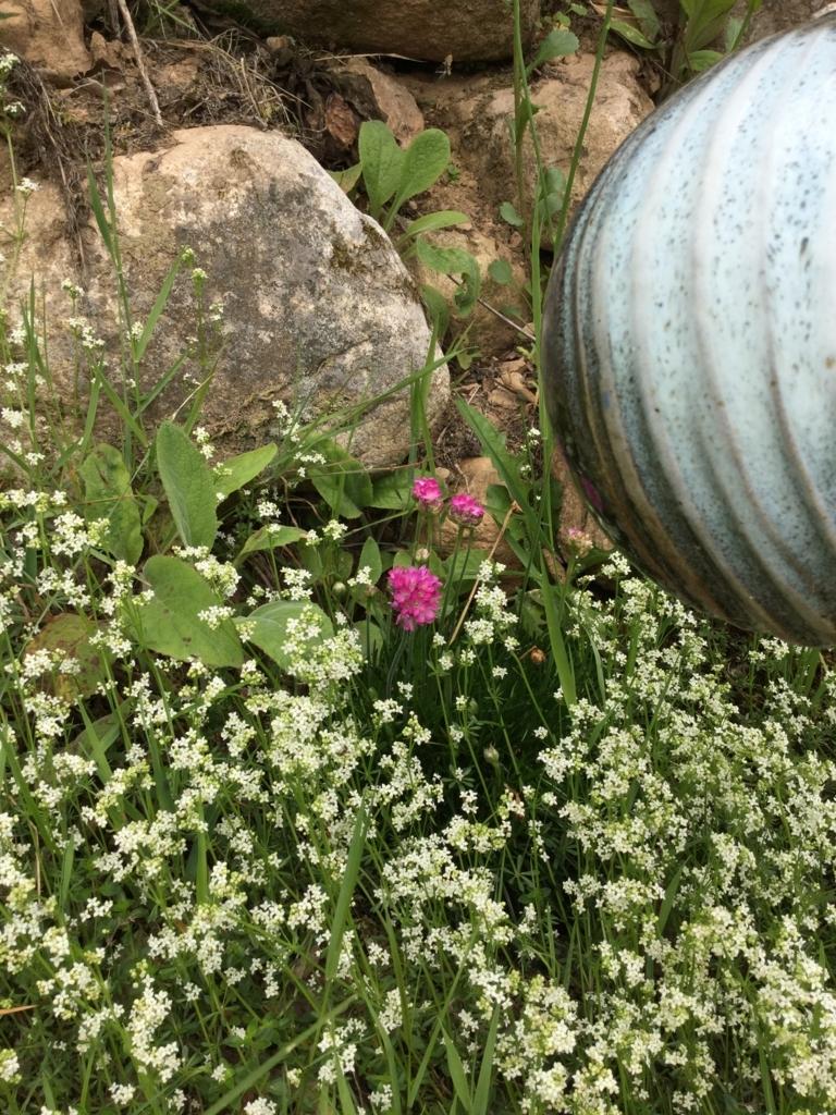 f:id:magnoliask:20180528190635j:plain
