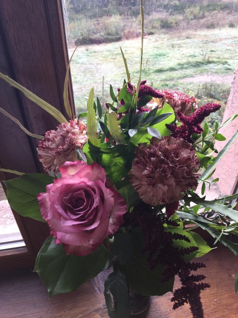 f:id:magnoliask:20181029052332j:plain