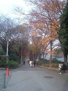 f:id:maguro1958:20071217150140j:image
