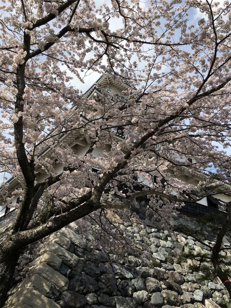 f:id:magurochiru:20170415011027j:image