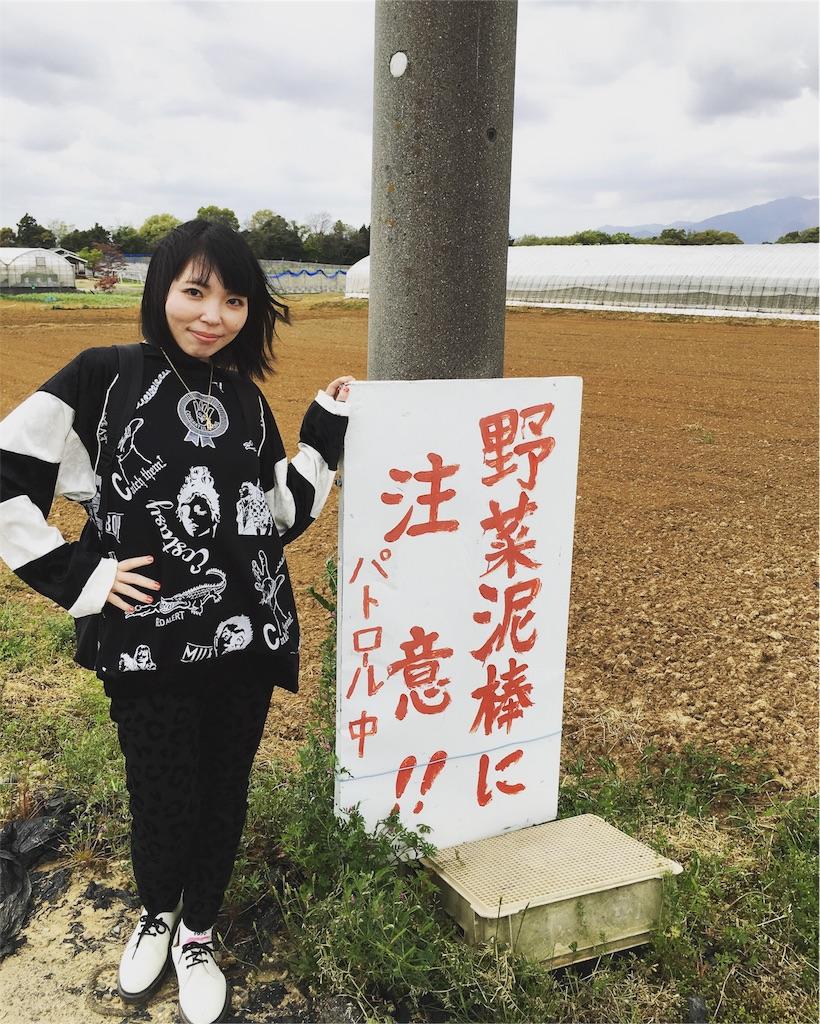 f:id:magurochiru:20170426090351j:image