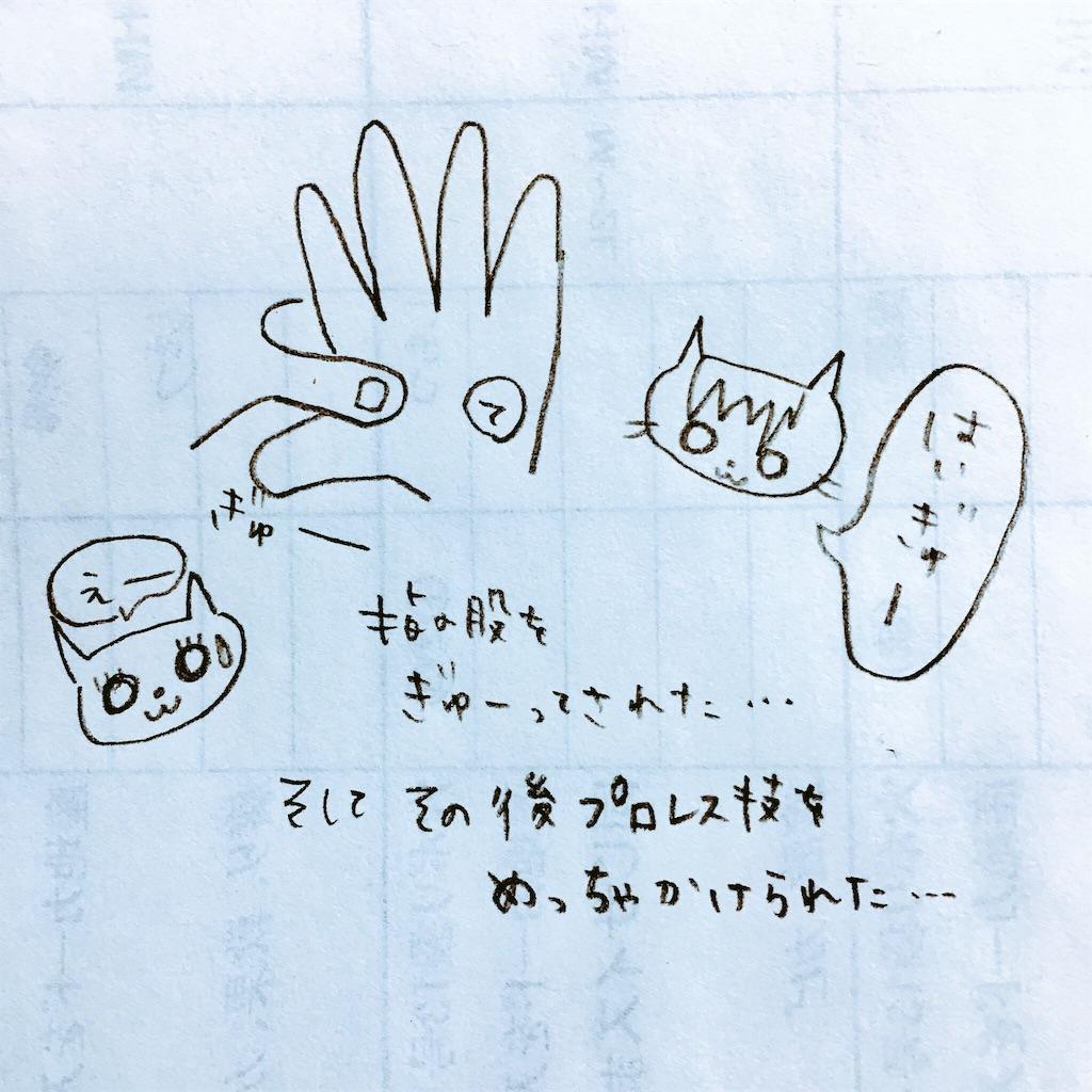 f:id:magurochiru:20170526222137j:image