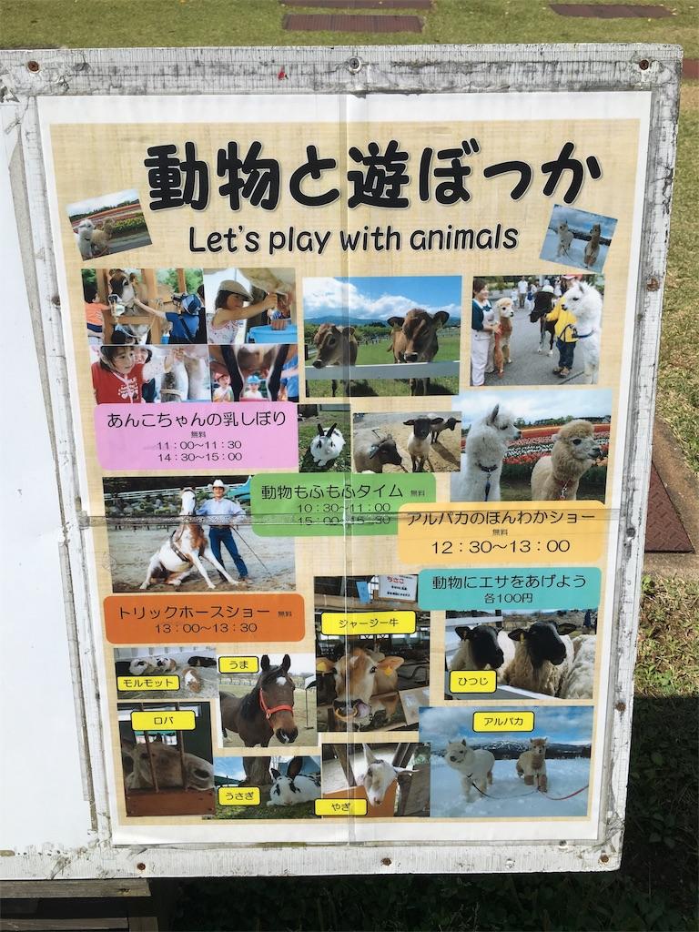 f:id:magurochiru:20171004203811j:image