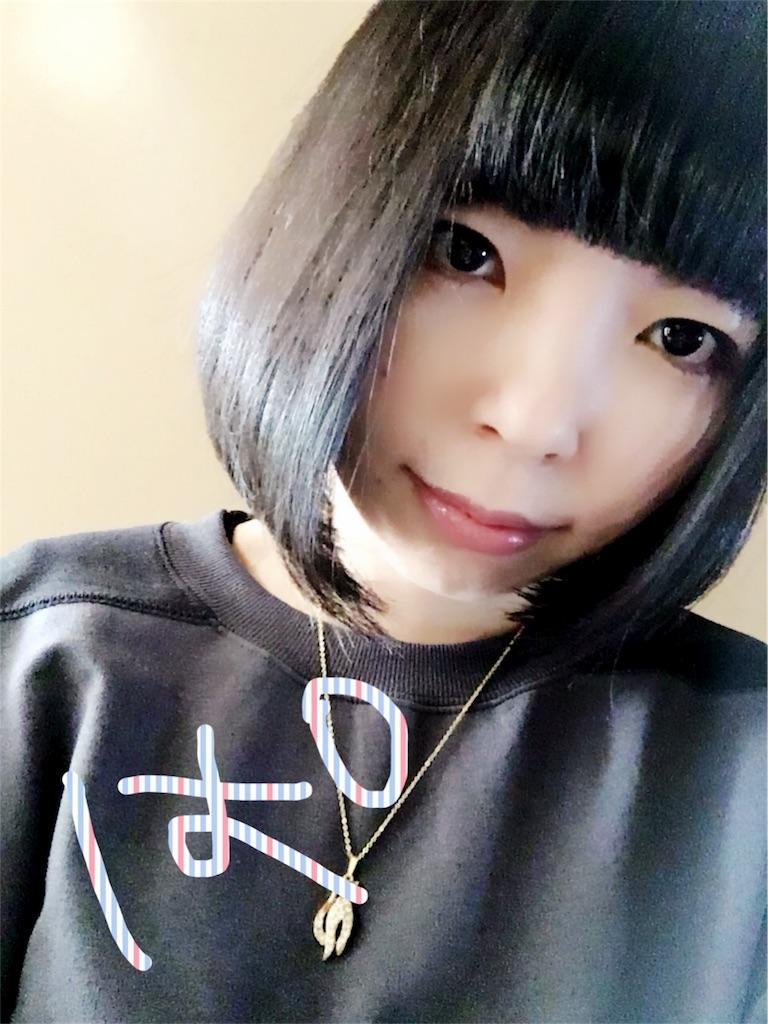 f:id:magurochiru:20180102230332j:image