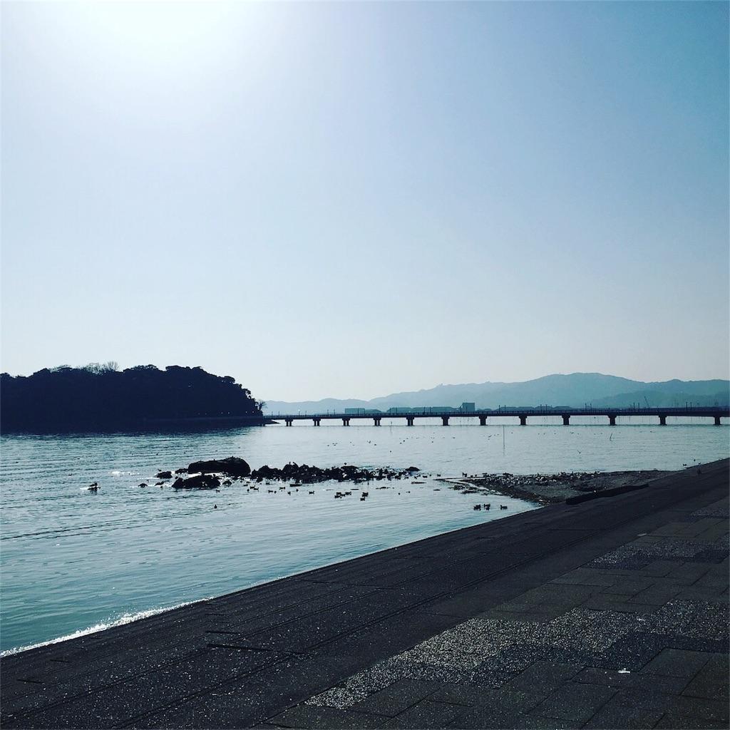 f:id:magurochiru:20180313235245j:image