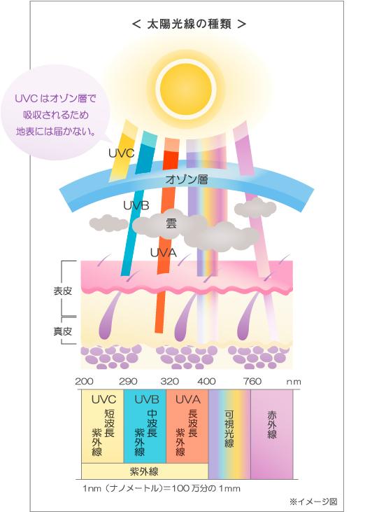 f:id:maguronoakami258:20170419143229j:plain