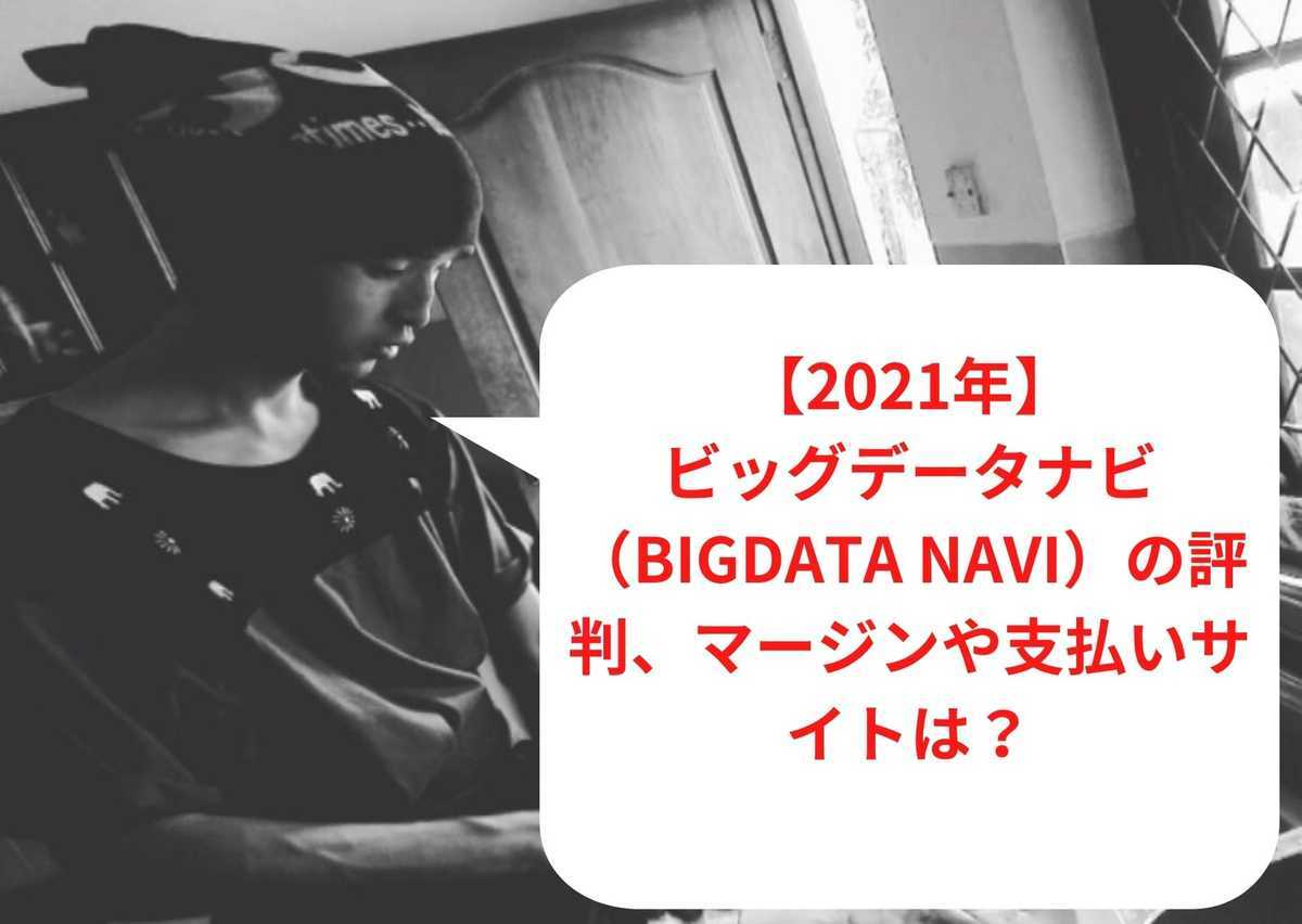 【2021年】ビッグデータナビ(BIGDATA NAVI)の評判、マージンや支払いサイトは?