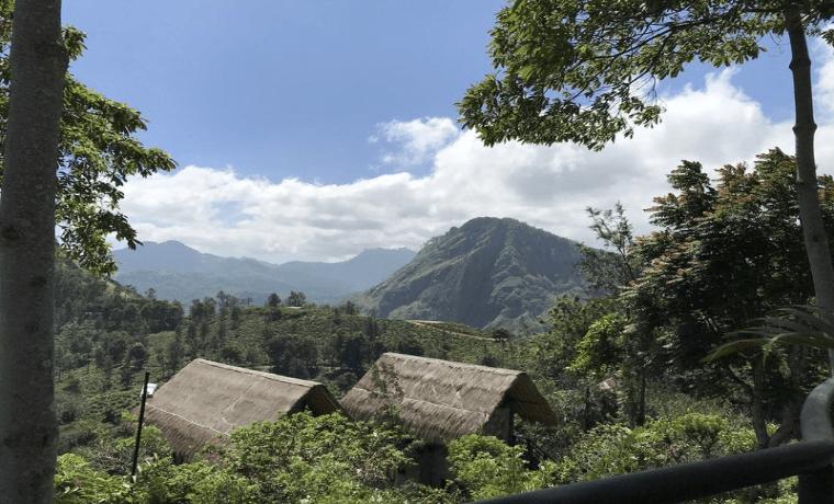 スリランカの森と小屋の写真