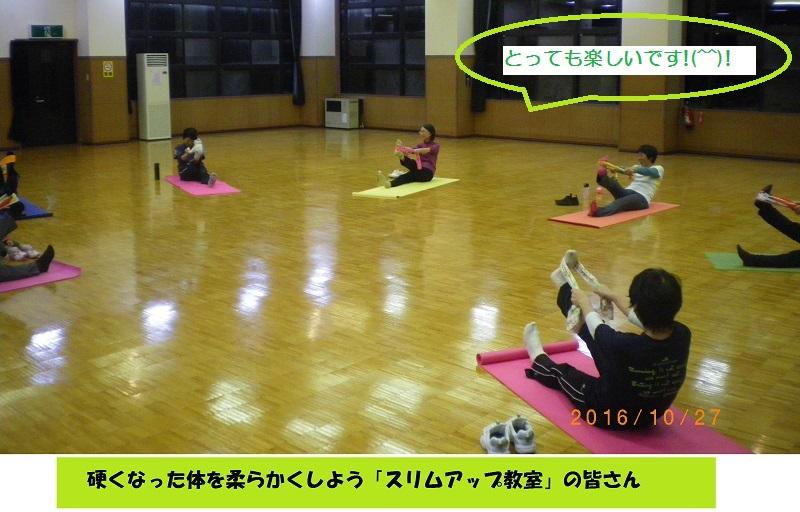 f:id:mahoroba-yabukami:20170106115608j:plain