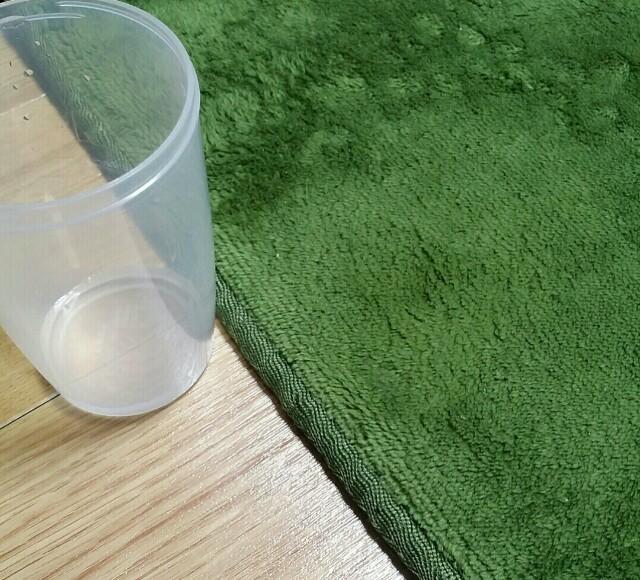 絨毯に零した水分を超吸水スポンジブロックで吸い取った写真