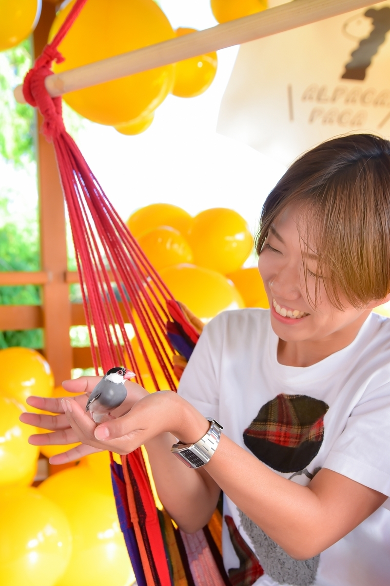 f:id:mai-balloon:20191010100120j:plain