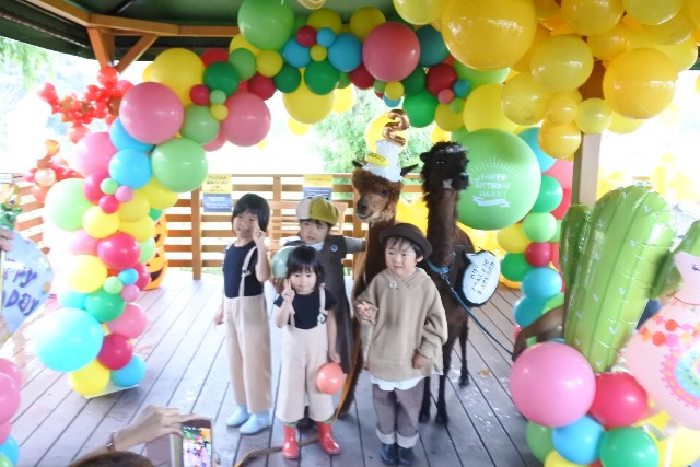 f:id:mai-balloon:20191101131421j:plain
