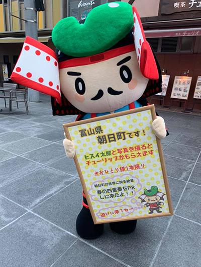 f:id:mai-mokoshi:20190330214042j:plain