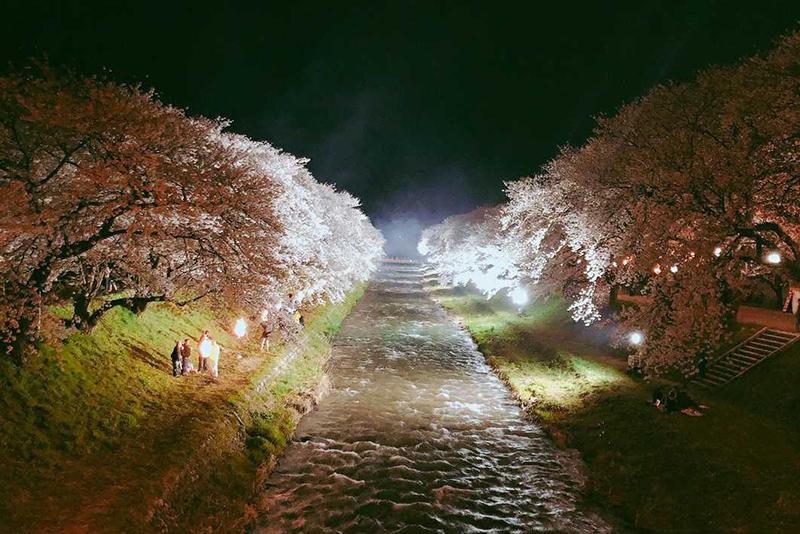 f:id:mai-mokoshi:20190414224752j:plain