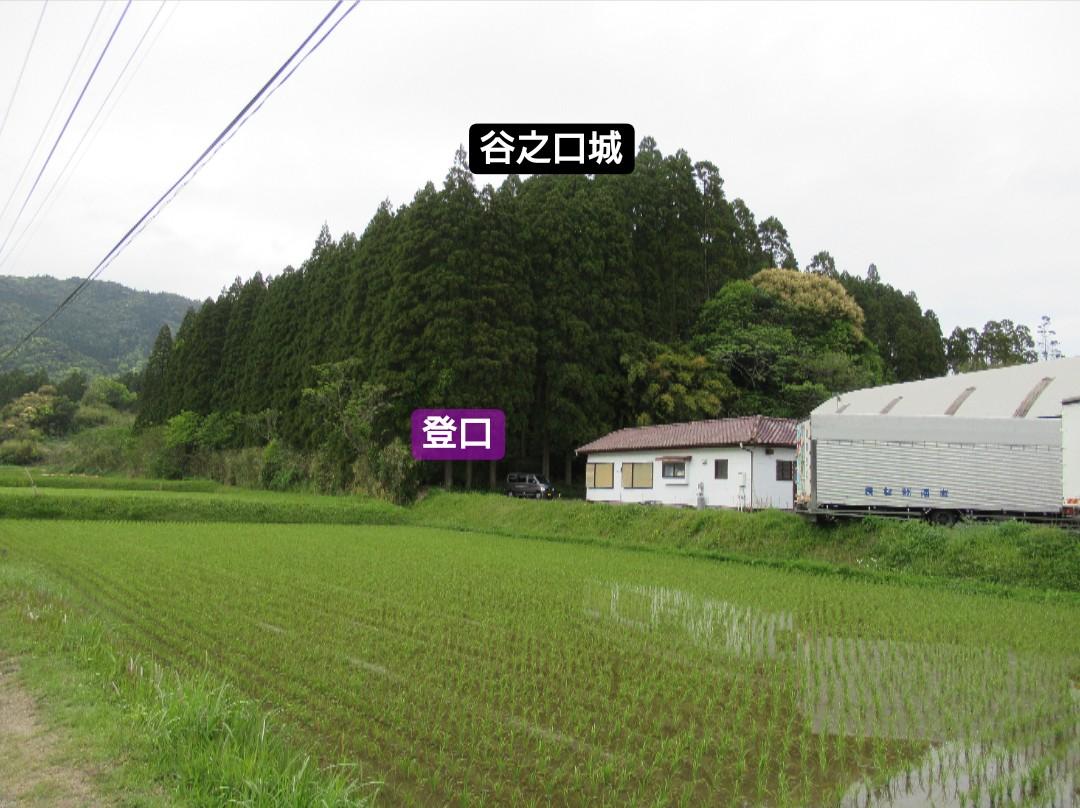 f:id:mai9mami:20200419200757j:plain
